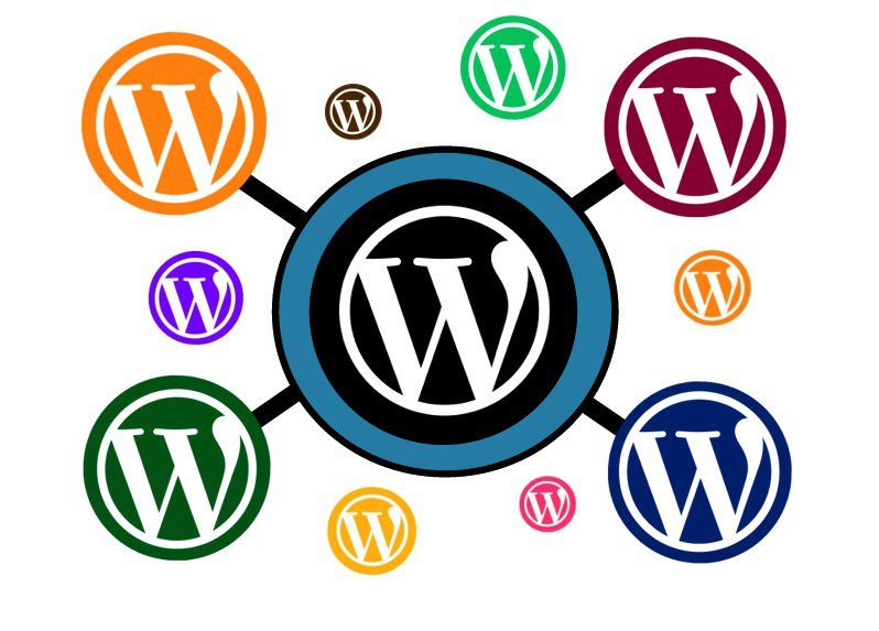 WordPress Multisite Guide for Beginners: Unlock the Power of Networks