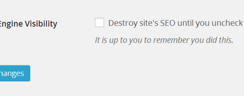 "Why You Should Never, Ever Check ""Discourage Search Engines"""