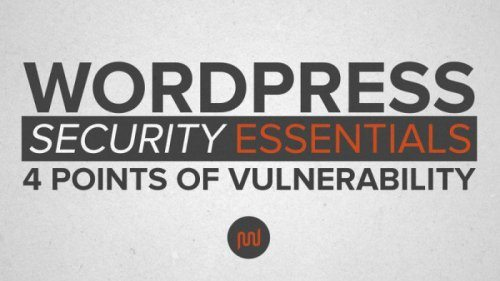 WordPress Security Essentials: Obscurity Tactics and Backups