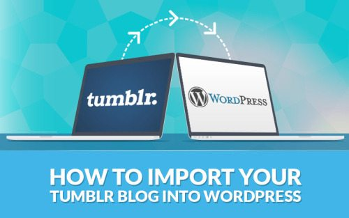 How to Import Your Tumblr Blog into WordPress
