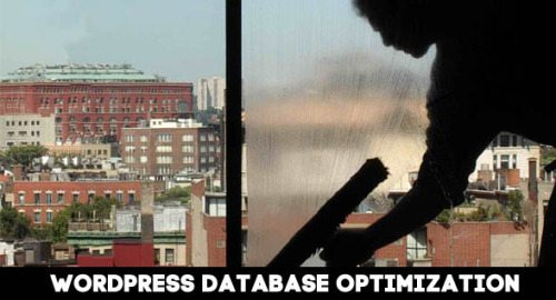 How to Optimize the WordPress Database