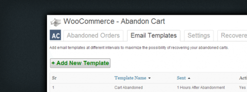 Increase Sales by Recovering Abandoned Shopping Carts in WooCommerce