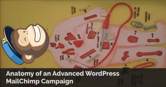Anatomy of an Advanced MailChimp RSS Campaign in WordPress