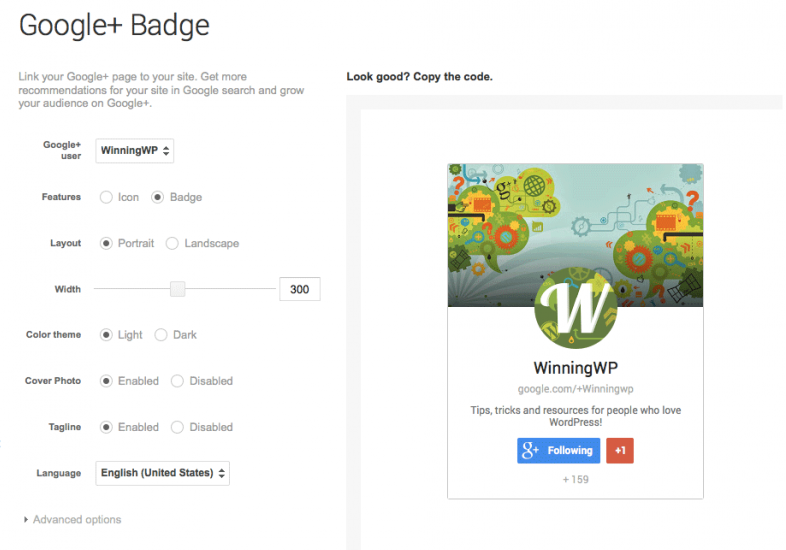 How to add an official Google+ icon/badge to a WordPress sidebar