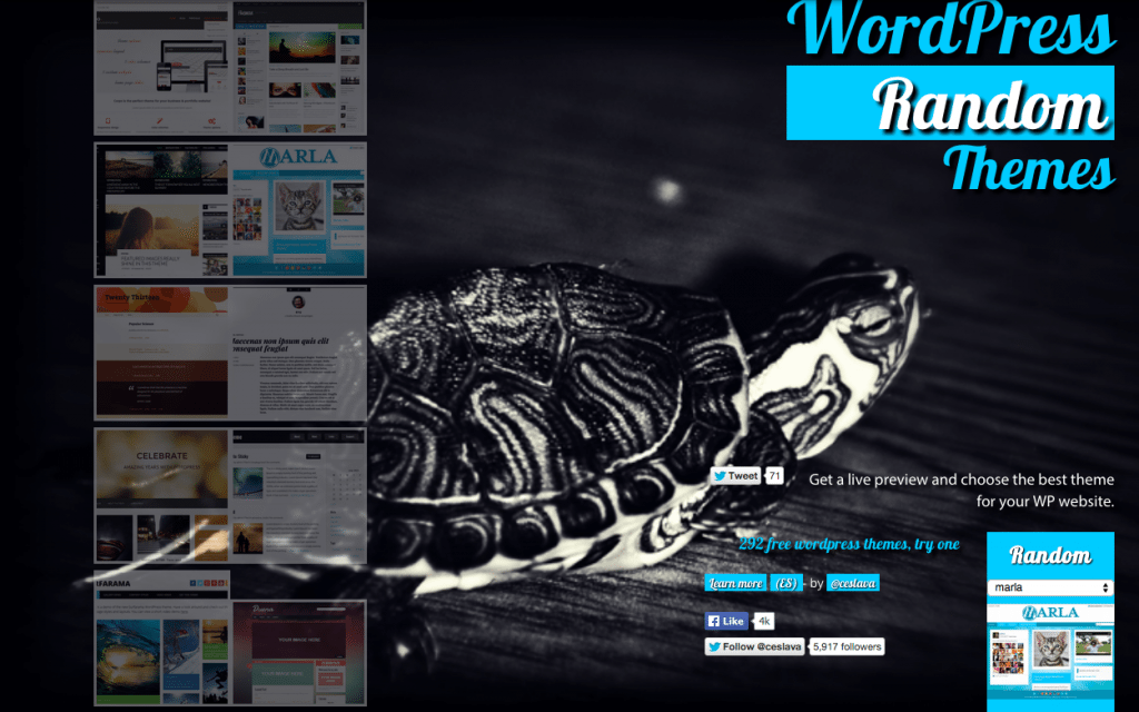 WordPress Random Themes