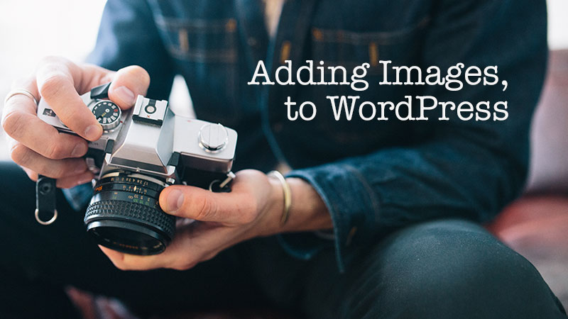 WordPress Plugins for Adding Beautiful Images to Your Website