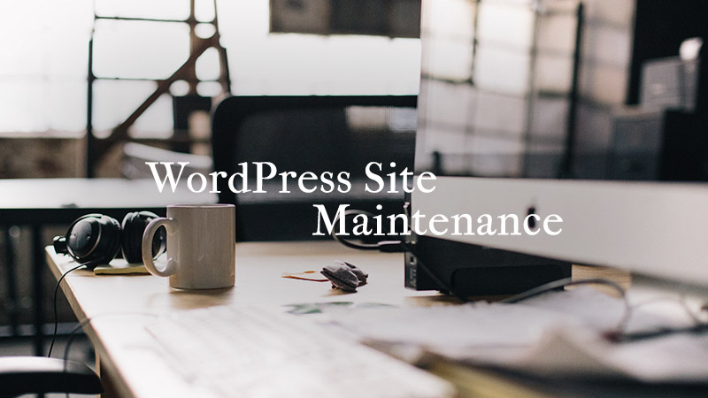 A Beginner's Guide To WordPress Website Maintenance