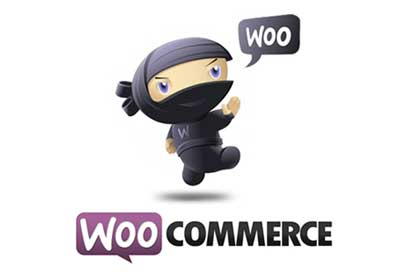 The Beginners Guide to WooCommerce: Shipping Settings Part 3