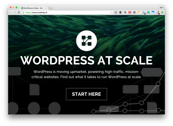 Scaling WordPress (And Doing It Right)