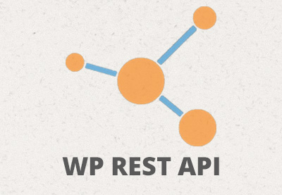WP REST API: Internals and Customization