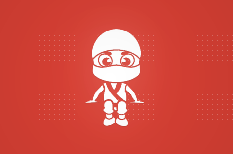 Security Ninja – Protect Your WordPress Site