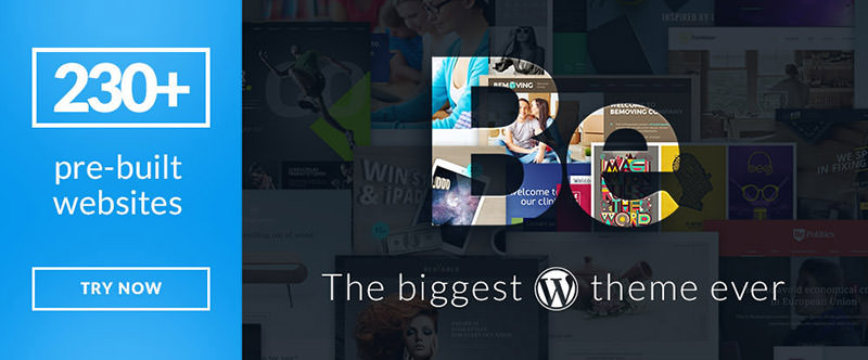 14 WordPress Themes to Getting 2017 off to a Good Start