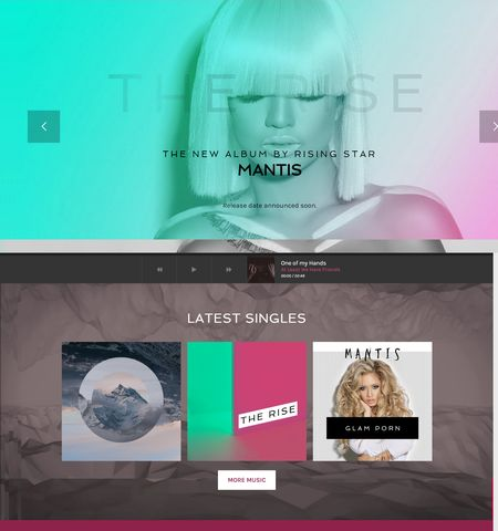 10+ Best Music WordPress Themes for 2017